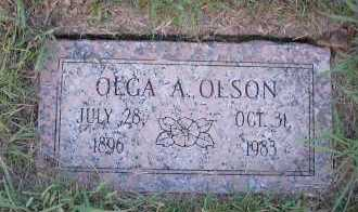 OLSON, OLGA A - Harris County, Texas | OLGA A OLSON - Texas Gravestone Photos