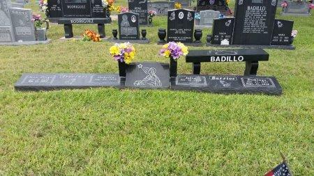 BARRIOS, FAMILY PLOT - Hidalgo County, Texas | FAMILY PLOT BARRIOS - Texas Gravestone Photos