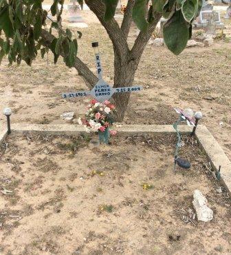 BRAVO, ELMER PEREZ - Hidalgo County, Texas | ELMER PEREZ BRAVO - Texas Gravestone Photos