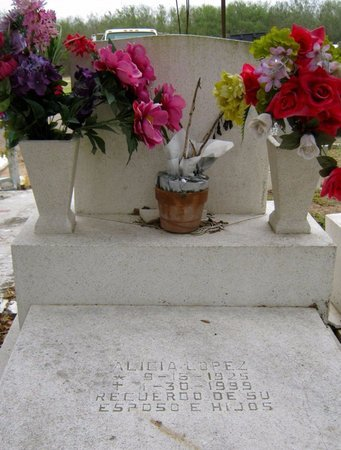LOPEZ, ALICIA - Hidalgo County, Texas | ALICIA LOPEZ - Texas Gravestone Photos