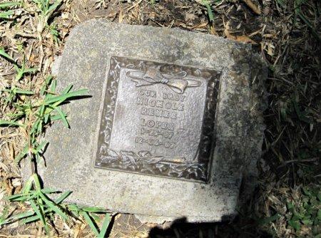 LOPEZ, NICHOLE RENEE - Hidalgo County, Texas   NICHOLE RENEE LOPEZ - Texas Gravestone Photos