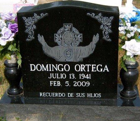 ORTEGA, DOMINGO - Hidalgo County, Texas | DOMINGO ORTEGA - Texas Gravestone Photos