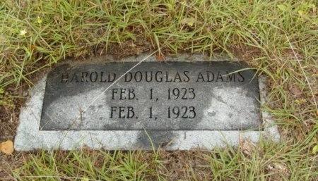 ADAMS, HAROLD DOUGLAS - Hood County, Texas | HAROLD DOUGLAS ADAMS - Texas Gravestone Photos