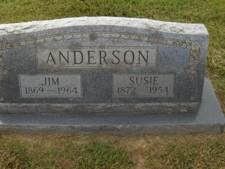 ANDERSON, SUE - Hopkins County, Texas | SUE ANDERSON - Texas Gravestone Photos