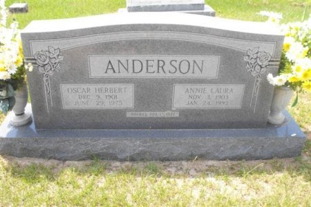 BURTON ANDERSON, ANNIE LAURA - Hopkins County, Texas | ANNIE LAURA BURTON ANDERSON - Texas Gravestone Photos