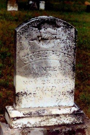 MINTER, JOSEPH THOMAS - Hopkins County, Texas   JOSEPH THOMAS MINTER - Texas Gravestone Photos