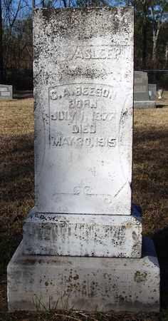 BEESON, COLEMAN ARLEDGE - Houston County, Texas   COLEMAN ARLEDGE BEESON - Texas Gravestone Photos