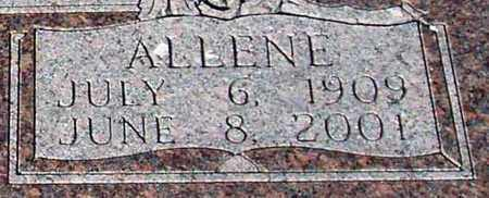LUCAS MAINER, ALLENE (CLOSE UP) - Houston County, Texas | ALLENE (CLOSE UP) LUCAS MAINER - Texas Gravestone Photos