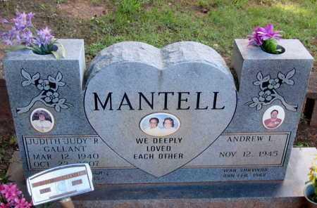 MANTELL (VETERAN VIET), ANDREW LEO - Houston County, Texas | ANDREW LEO MANTELL (VETERAN VIET) - Texas Gravestone Photos