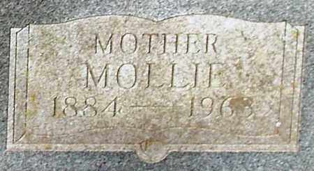 SPEER, MOLLIE (CLOSE UP) - Houston County, Texas | MOLLIE (CLOSE UP) SPEER - Texas Gravestone Photos