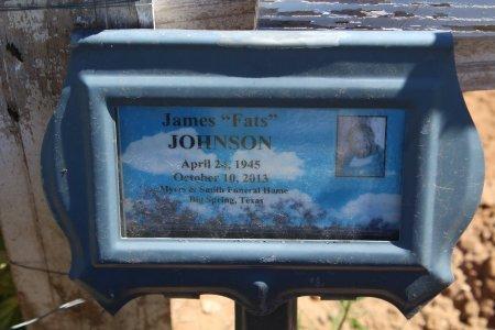JOHNSON, JAMES (CLOSEUP) - Howard County, Texas   JAMES (CLOSEUP) JOHNSON - Texas Gravestone Photos