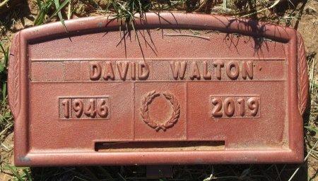 WALTON, DAVID - Hutchinson County, Texas | DAVID WALTON - Texas Gravestone Photos