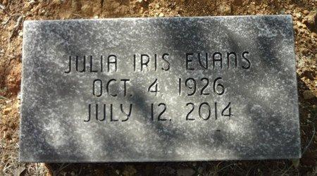 EVANS, JULIA IRIS - Jack County, Texas | JULIA IRIS EVANS - Texas Gravestone Photos