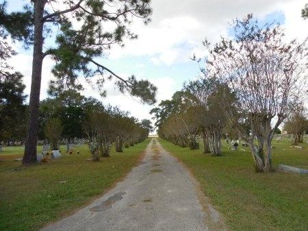 *CEMETERY VIEW,  - Jackson County, Texas |  *CEMETERY VIEW - Texas Gravestone Photos
