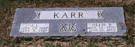 PAGE KARR, OLLIE B - Johnson County, Texas | OLLIE B PAGE KARR - Texas Gravestone Photos