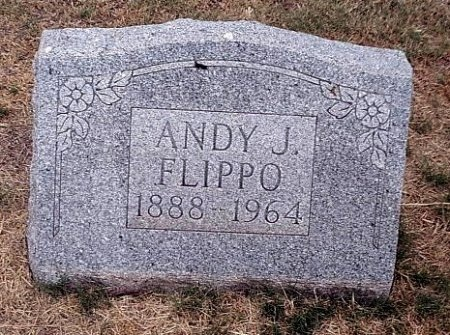 "FLIPPO, ANDREW JACKSON ""ANDY"" - Jones County, Texas 
