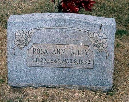 RILEY, ROSA ANN - Jones County, Texas | ROSA ANN RILEY - Texas Gravestone Photos