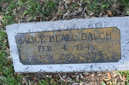 BEALL BALCH, ALICE - Kendall County, Texas | ALICE BEALL BALCH - Texas Gravestone Photos