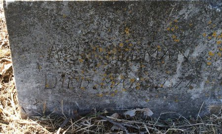 FREEMAN, A. J. (CLOSE UP) - Kendall County, Texas | A. J. (CLOSE UP) FREEMAN - Texas Gravestone Photos