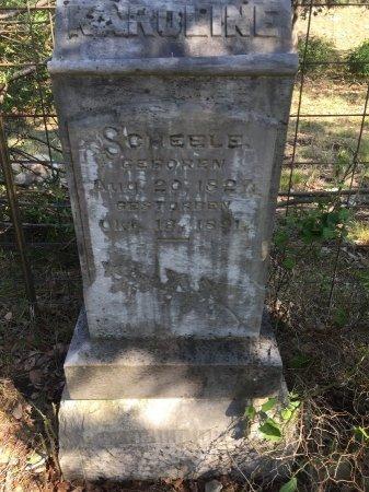 HAAS SCHEELE, KAROLINE - Kendall County, Texas | KAROLINE HAAS SCHEELE - Texas Gravestone Photos