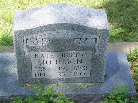 JOHNSON, KATE - Kimble County, Texas | KATE JOHNSON - Texas Gravestone Photos