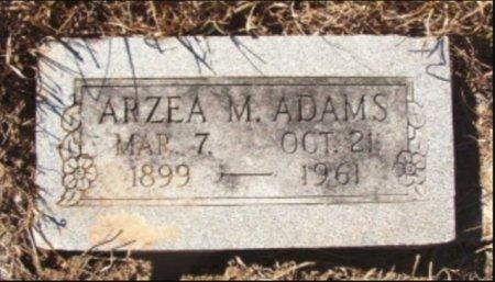 ADAMS, AREA M - Lamar County, Texas | AREA M ADAMS - Texas Gravestone Photos