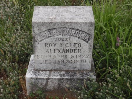 ALEXANDER, LEOLA VIRGINIA - Lamar County, Texas   LEOLA VIRGINIA ALEXANDER - Texas Gravestone Photos