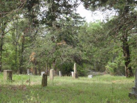 *OVERVIEW, * - Lamar County, Texas   * *OVERVIEW - Texas Gravestone Photos