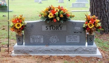 BROCKWAY STORY, PATRICIA ANN - Lamar County, Texas | PATRICIA ANN BROCKWAY STORY - Texas Gravestone Photos
