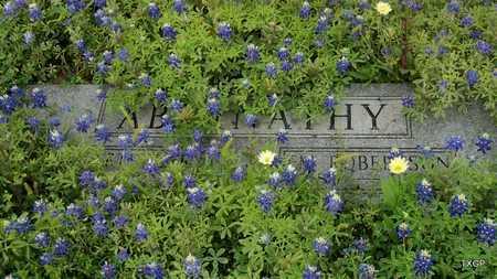 ABERNATHY, EM - Lavaca County, Texas | EM ABERNATHY - Texas Gravestone Photos