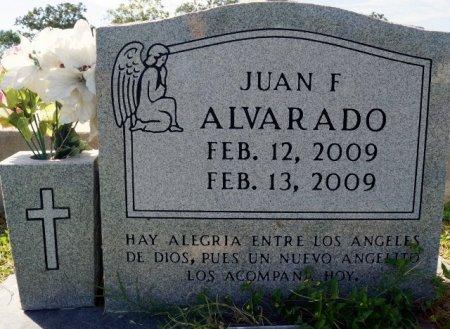 ALVARDO, JUAN F. - Lee County, Texas | JUAN F. ALVARDO - Texas Gravestone Photos