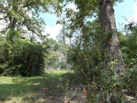 *CEMETERY GATE,  - Lee County, Texas |  *CEMETERY GATE - Texas Gravestone Photos