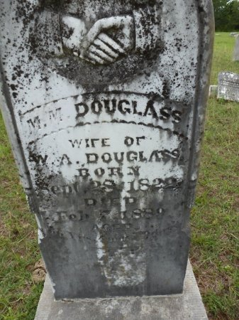 DOUGLASS, M. M. - Lee County, Texas | M. M. DOUGLASS - Texas Gravestone Photos