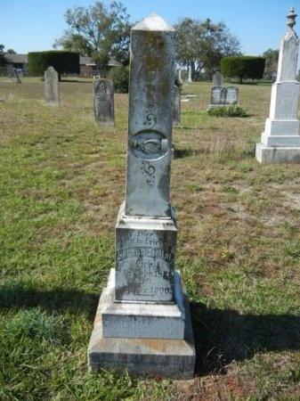 HOLLASS, JOHANN - Lee County, Texas | JOHANN HOLLASS - Texas Gravestone Photos