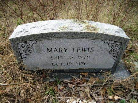 LEWIS, MARY - Lee County, Texas | MARY LEWIS - Texas Gravestone Photos
