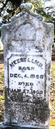 LAMB, SR, MEEDY - Leon County, Texas   MEEDY LAMB, SR - Texas Gravestone Photos
