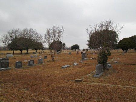 * COOLIDGE VIEW,  - Limestone County, Texas    * COOLIDGE VIEW - Texas Gravestone Photos