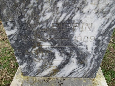 PIPPIN, A. L. (CLOSEUP) - Limestone County, Texas | A. L. (CLOSEUP) PIPPIN - Texas Gravestone Photos