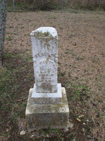 PIPPIN, FATY - Limestone County, Texas | FATY PIPPIN - Texas Gravestone Photos