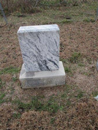 PIPPIN, VIVA - Limestone County, Texas | VIVA PIPPIN - Texas Gravestone Photos