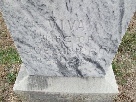 PIPPIN, VIVA (CLOSEUP) - Limestone County, Texas | VIVA (CLOSEUP) PIPPIN - Texas Gravestone Photos