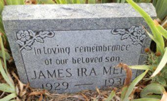 MEHL, JAMES IRA - Lipscomb County, Texas | JAMES IRA MEHL - Texas Gravestone Photos