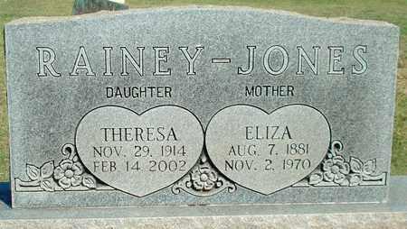 JONES, ELIZA B - Lubbock County, Texas | ELIZA B JONES - Texas Gravestone Photos
