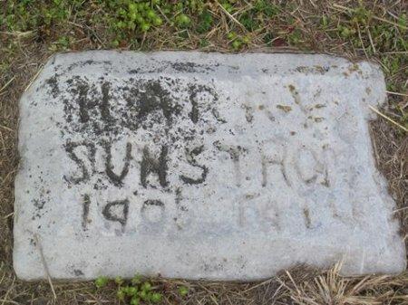 SUNSTROM, HARRY - Matagorda County, Texas   HARRY SUNSTROM - Texas Gravestone Photos