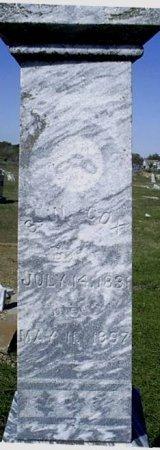 COX, G. W. - McLennan County, Texas | G. W. COX - Texas Gravestone Photos
