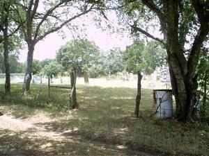 *COX CEMEMTERY VIEW,  - McLennan County, Texas |  *COX CEMEMTERY VIEW - Texas Gravestone Photos