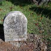 SPEEGLE, ADAM - McLennan County, Texas   ADAM SPEEGLE - Texas Gravestone Photos