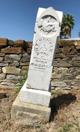 RENKEN, HENRY T. - Medina County, Texas | HENRY T. RENKEN - Texas Gravestone Photos