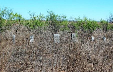 *CEMETERY VIEW,  - Mitchell County, Texas |  *CEMETERY VIEW - Texas Gravestone Photos
