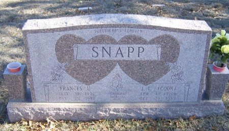 SNAPP, JAMES LAWRENCE - Montague County, Texas | JAMES LAWRENCE SNAPP - Texas Gravestone Photos